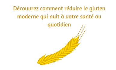 Gluten or not gluten, formation en ligne